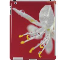 Red Rain iPad Case/Skin