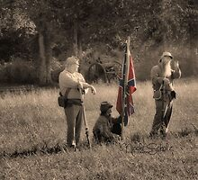 Confederate Soldiers by Nicole  Scholz