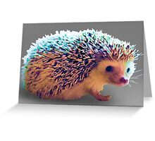 Hedgehog Greeting Card