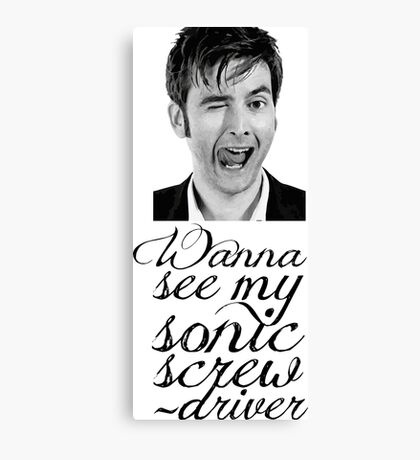 Wanna see my sonic screwdriver? Canvas Print