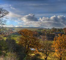 Bolton Abbey by brendan1980