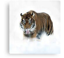 Winter hunting Canvas Print