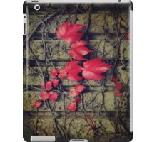 Weaving iPad Case iPad Case/Skin