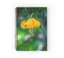 Yellow-Orange Flower with Curling Petals Spiral Notebook