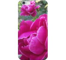 Peony Blush  iPhone Case/Skin