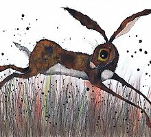 DASHING HARE by Hares & Critters