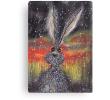 SNOW HARE Canvas Print