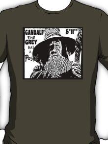 Gandalf Has A Posse T-Shirt