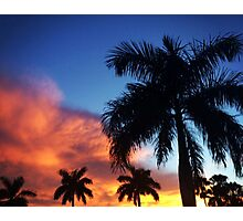 Sunset & Palms Photographic Print