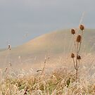 Winter's Day at Caburn by mikebov