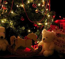 MERRY CHRISTMAS.....(photo by Marie Will) by RoseMarie747