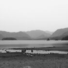 Derwent Water - Keswick (Black & White) by mps2000