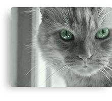Eyes of Green ~ Canvas Print