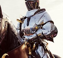Knight In Shining Armour by Linsey Williams