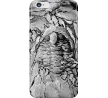 Painted Trilobite Fossil - black & white iPhone Case/Skin