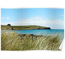Godfreys Beach Stanley Poster