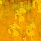 Grunge abstract botanical pattern yellow iris motif by campyphotos