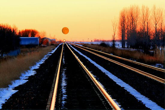 'MOON-O-Rail' by Larry Trupp