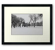 Texas Snow Framed Print