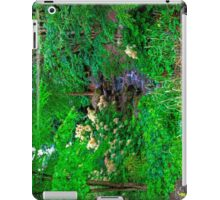 The Beatrix Potter Garden in Birnam iPad Case/Skin