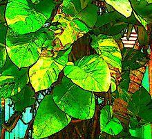 """Key West Tree"" by Chip Fatula by njchip123"