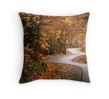 Zig Zag road Throw Pillow
