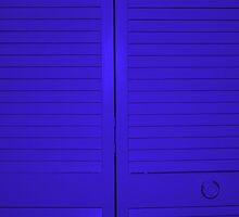 """""""Blue Closet Doors"""" by Chip Fatula by njchip123"""
