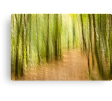 A run in the forest Canvas Print