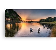 Sunset - Don't be a goose! Canvas Print