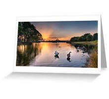 Sunset - Don't be a goose! Greeting Card