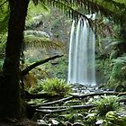 Hopetoun Falls, Otway Ranges by Joe Mortelliti