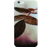 A Sprinkling of Sugar iPhone Case/Skin