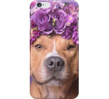 Flower Power, JD iPhone Case/Skin