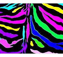 """Digital Zebra Multicolor"" Photographic Print"