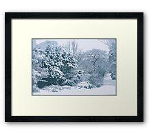 Snow In The Park Framed Print
