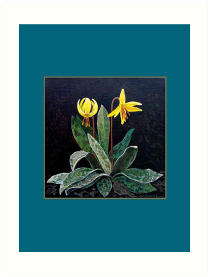 """Trout Lily""   by Jean Gregory  Evans"