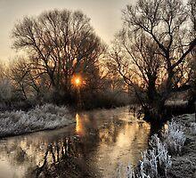 Winters Reflection by Simon Pattinson