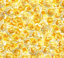 Yellow Roses by Nefe
