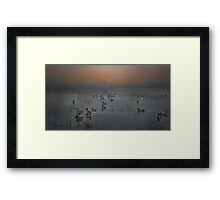 Duck The Fog Framed Print