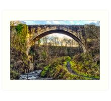 The Causey Arch Art Print