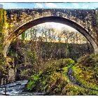 The Causey Arch by Bob Noble