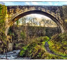 The Causey Arch by Beverly Watson