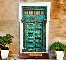 Magic door by Carolina Couto