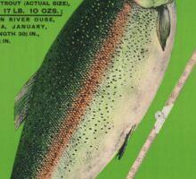 Vintage poster -Tasmania Sticker