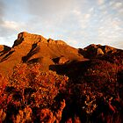 Bluff Knoll Sunset by Tony Brown