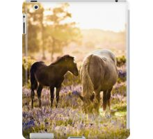 Horse and foal in the New Forest iPad Case/Skin