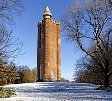 King Alfred's Tower, Stourton, Wiltshire, UK by Andrew Harker