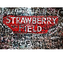 Strawberry Field Photographic Print