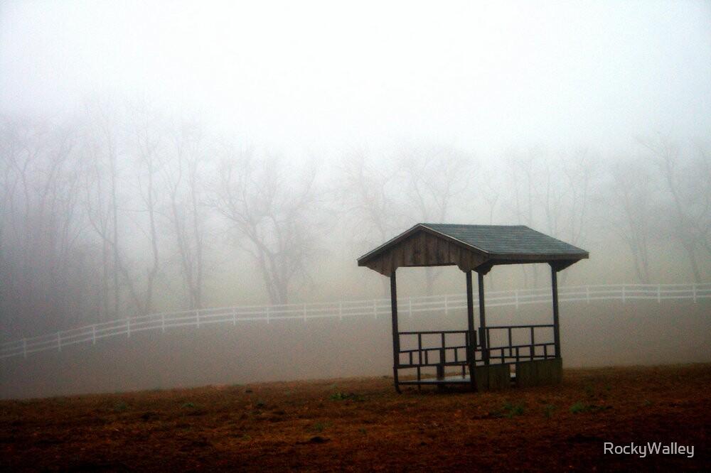 Fog on the Farm by RockyWalley
