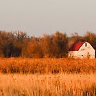 The Little Kansas Barn by kgarlowpiper